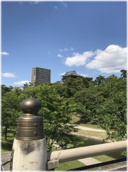岡崎城風景